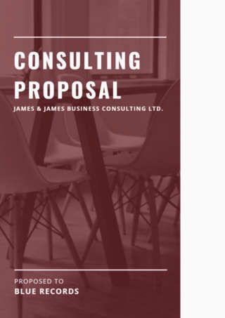Consulting Brochure